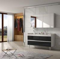 西文卫浴整体集成浴室柜新品非标定制卫浴G400T